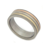 Gold and titanium ring